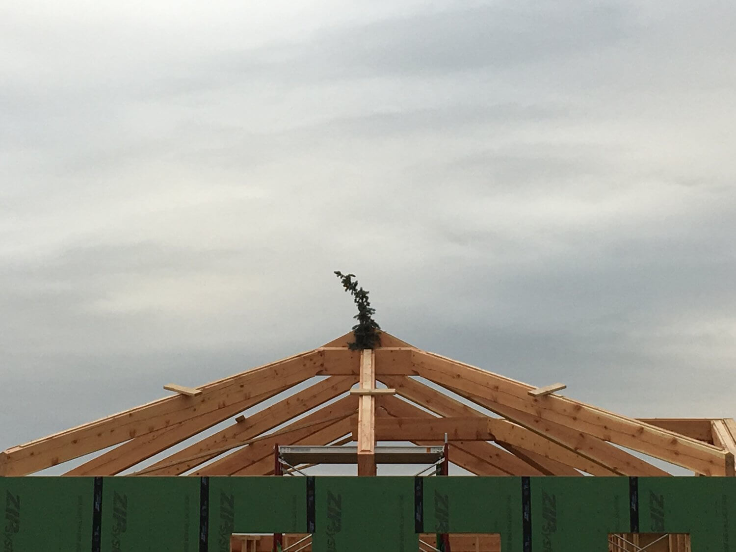 roof on a new home